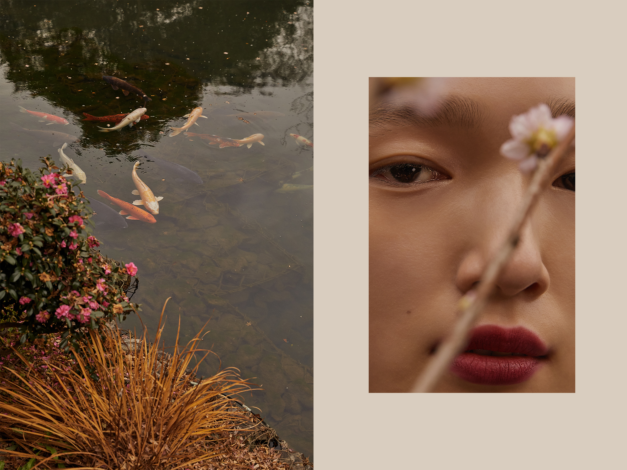 Beauty, Editorial, Chanel, Spring, Summer, Amanda, Shadforth, Photography