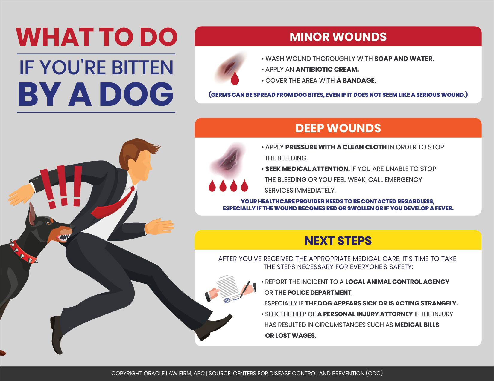 Personal Injury Infographic: What to Do If You're Bitten ...