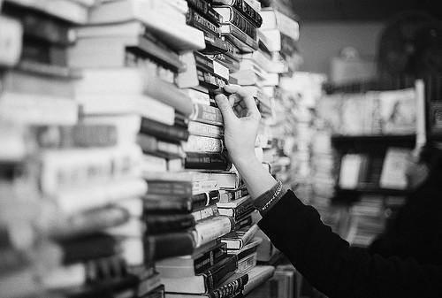 cercare, trovare, libri, conoscenza, cotroneo