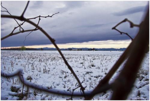 Neve dic 2012_0160fb.jpg