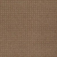 Shaw Floors - My Choice Pattern - Style No. E0653