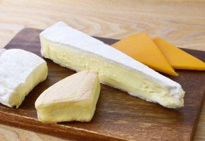 犬にチーズ