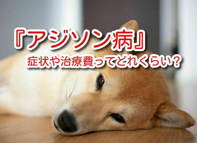 犬 アジソン病