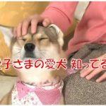 愛子さま 犬 ゆり