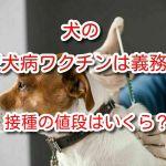 犬 狂犬病ワクチン 値段