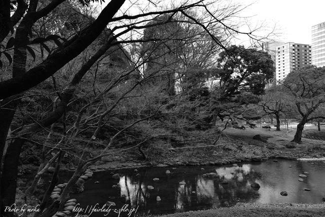 20110323_koishikawa21.jpg