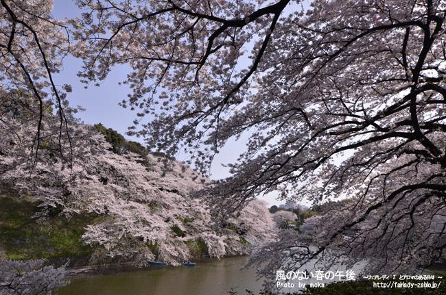 20110410_chidorigafuti12.jpg