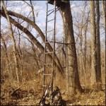 Tree stand & hunting equipment 001