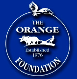 The Orange Foundation