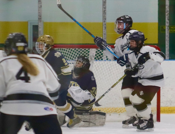 Girls' Ice Hockey: Notre Dame - Fairfield Defeats the Blades in Hamden
