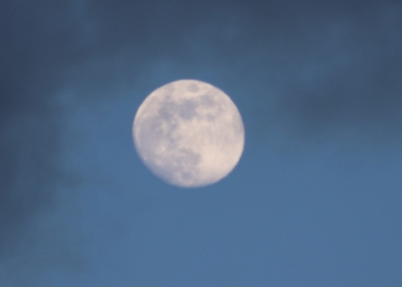 Full Moon in May – Orange Live