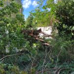 No, The Town Will Not Pick Up Your Storm Debris