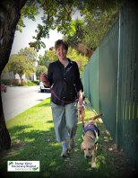SA Guide Dog's Puppy trainer Carina walking with Reila.