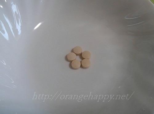 レジスタントプロテイン配合のサプリ 和の酒粕