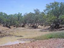 the paroo river