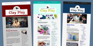 Edits, writes and designs the NWPCG Newsletters using Mailchimp to design, edit and build an audience