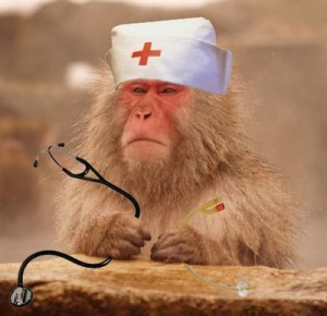 health care gone to the apes