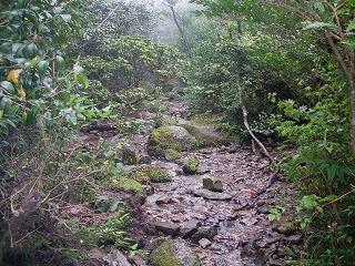稲尾岳登山道3