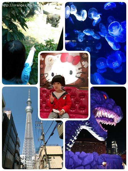 東京行程規劃