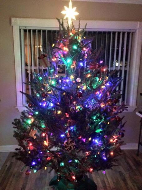 My dad's tree