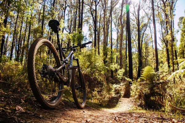 OCC Reminder of Bike Rules for Racebrook Tract