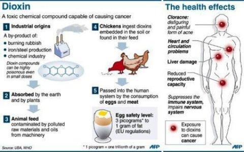 Dioksin Bahaya