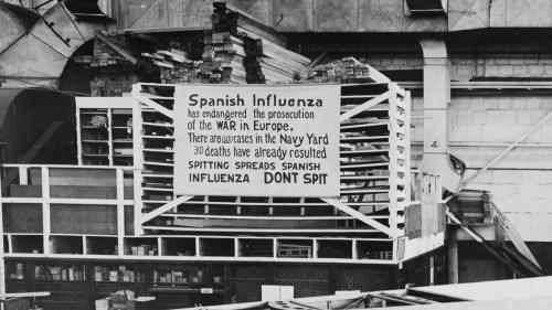 Spanish Flu 808
