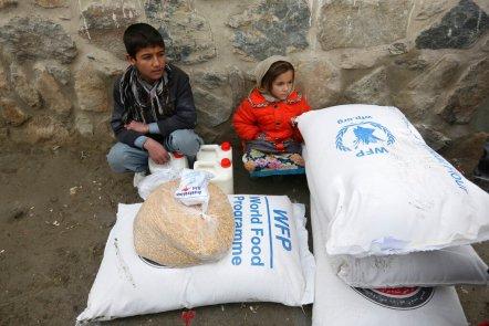 Wfp Peace Prize