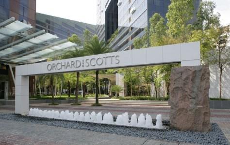 orchard scotts