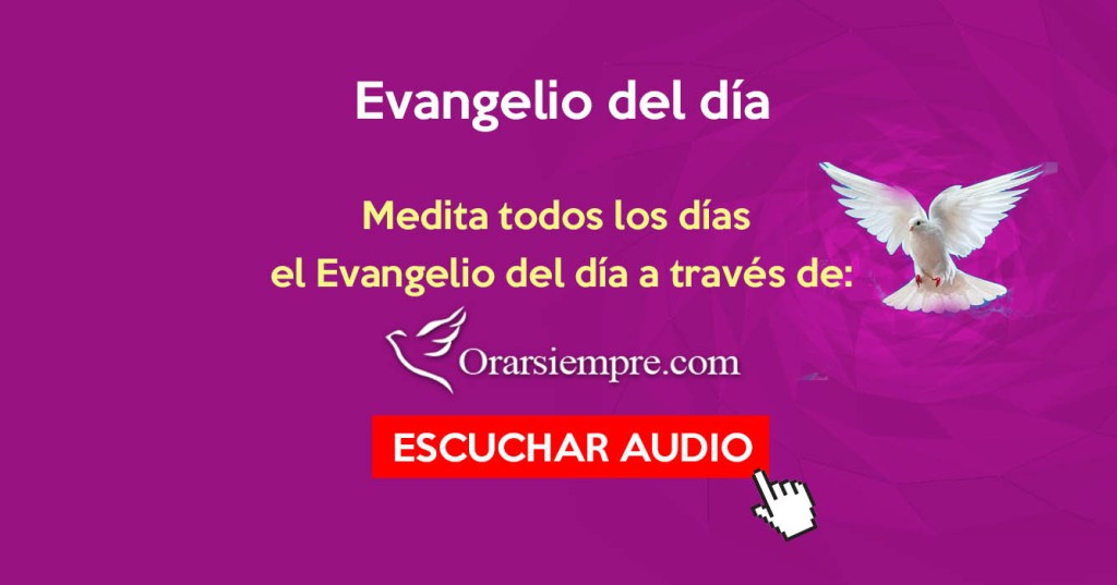 Evangelio Del Día Página 34 Orar Siempre