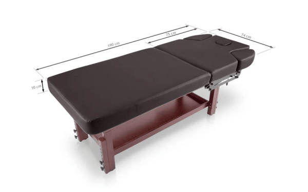 SPA Massage Table With Lower Tray 4
