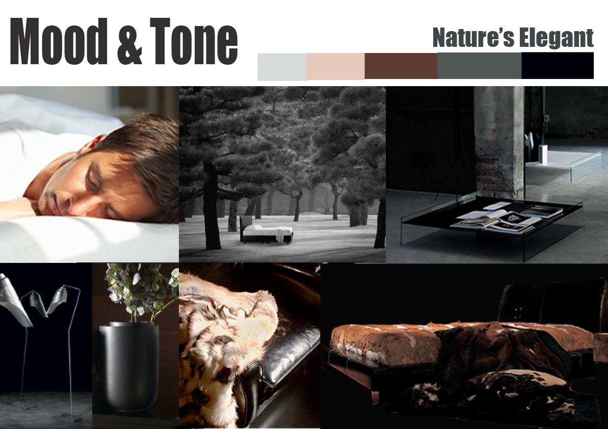 Mood And Tone Bedroom