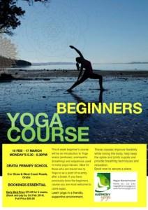 Yoga beginners course2014.jpg