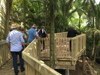 Le Roys Bush Walkway to enjoy the restoration