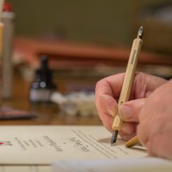 A degree is written to be given to a graduating student.