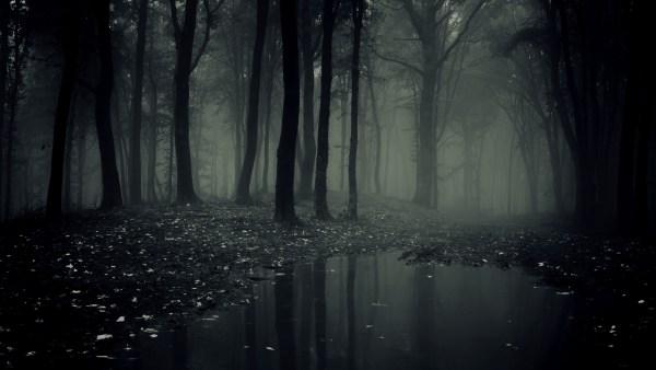 dark-forest-4-600x338 Aventura CaLuCe: O plano de Sombra da Morte, parte 2