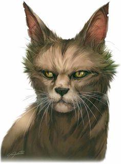 myau Estratagema do Obscuro: a gata mística e o guerreiro