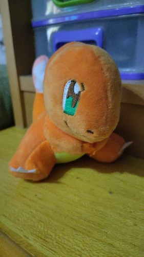 Charmander Plush Toy photo review