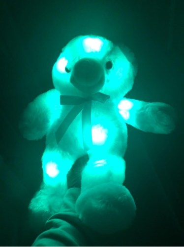 Glowing Light Adorable Bear Stuffed Plush Toy Animal photo review