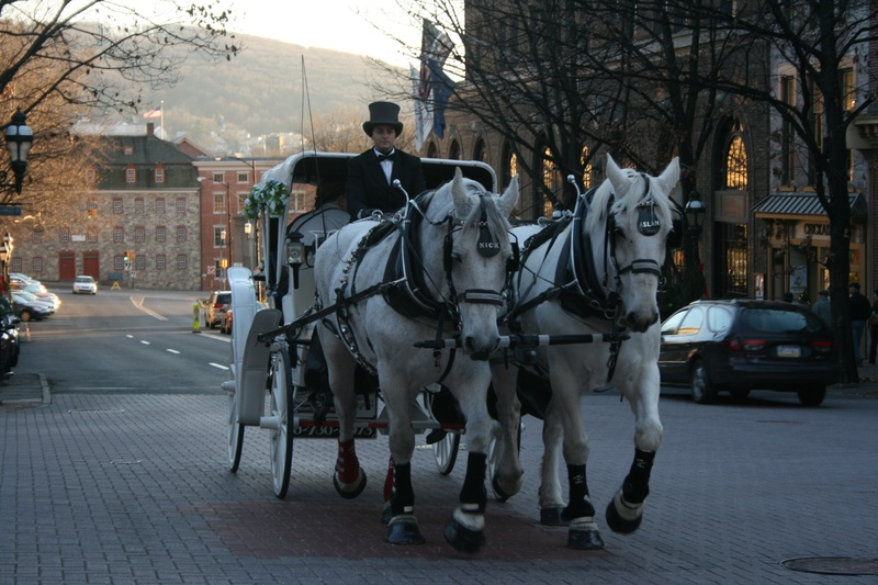 Mainstreet horses Bethlehem, PA