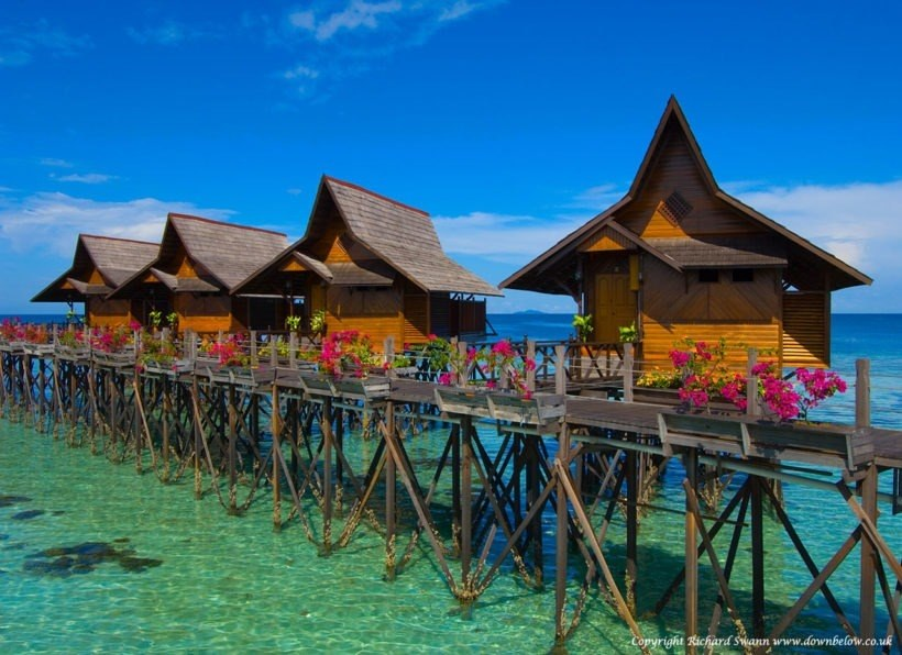 Sipadan Kapalai Dive Resort ★★★★ - Kapalai - Orca