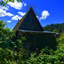 A cool barn? Or house? / Photographer: Quinn Kissel