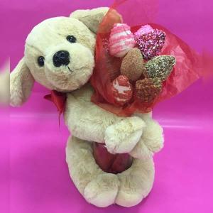 Puppy Love Edible Bouquet - Orchard Berry Arrangements