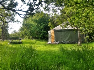 Greengage Yurt