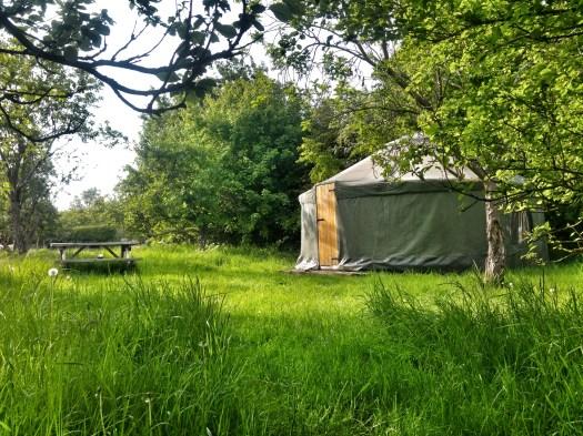 Greengage Yurt