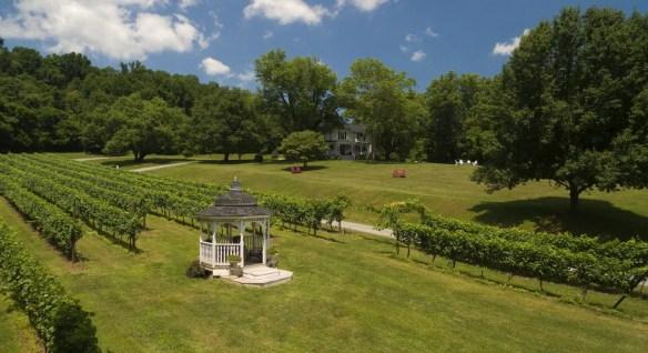 Overhead view of white gazebo leading to vineyards