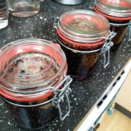 Elderberry Gin, ready for the waiting game