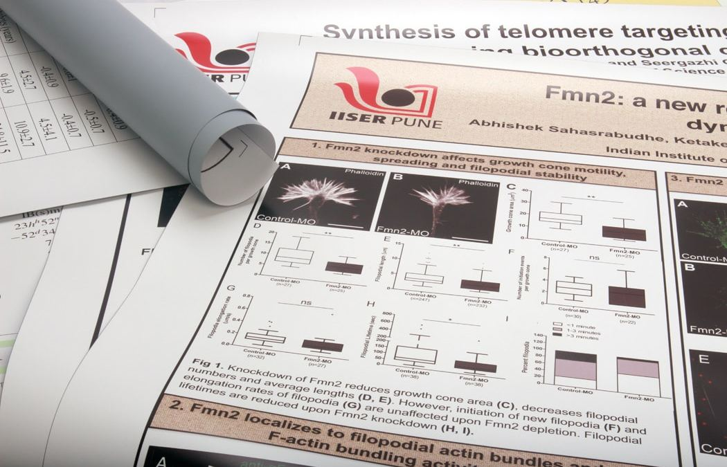Scientific posters / Competition posters: Quality prints to showcase your research