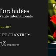 Exposition Orchidées Chantilly – novembre 2017