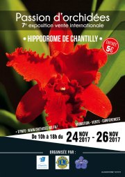 passion ochidees exposition internationale chantilly 2017